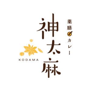 薬膳カレー 神太麻 -KODAMA-